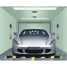 Auto Car Elevator Lift CE Approved (GRA10)
