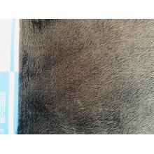Tecido de lã composto Mircofleece Print