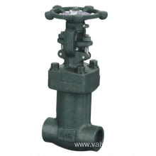 Forged Steel bellow sealed Valve