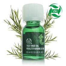 Оптовая цена 100% чистого эфирного масла чайного дерева