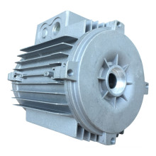 Motor Parts Professional Die Casting ISO Ts Die Casting