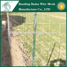 Heiß getaucht galvanisierter Glasland Zaun / Vieh Zaun / Feld Zaun / Glasland Zaun, Kuh Zaun