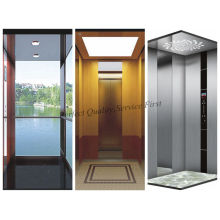 Hot Sale 0.4m/S Passenger Elevator Home Lift Without Machine Room