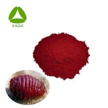 Pigment naturel de haute qualité 50% poudre de cochenille carmin