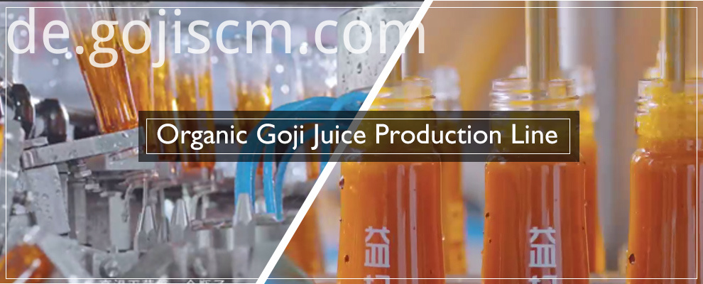 2017 Goji Berry Juice Production Line