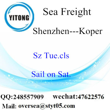 Shenzhen Port LCL Consolidation To Koper
