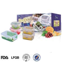 L einfache Sperre kleine Kunststoff-Aufbewahrungsbox mit Deckel