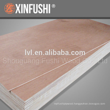 manufacturing plant commercial Plywood 18mm