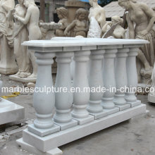 Balaustrada de pedra da escada da escultura (SY-B001)