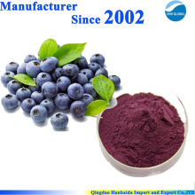 Blueberry Powder Bulk,Blueberry Fruit Powder