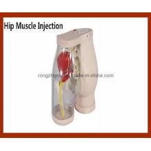 Simulateur de comparaison d'injection de muscle de hip-muscle de haut niveau