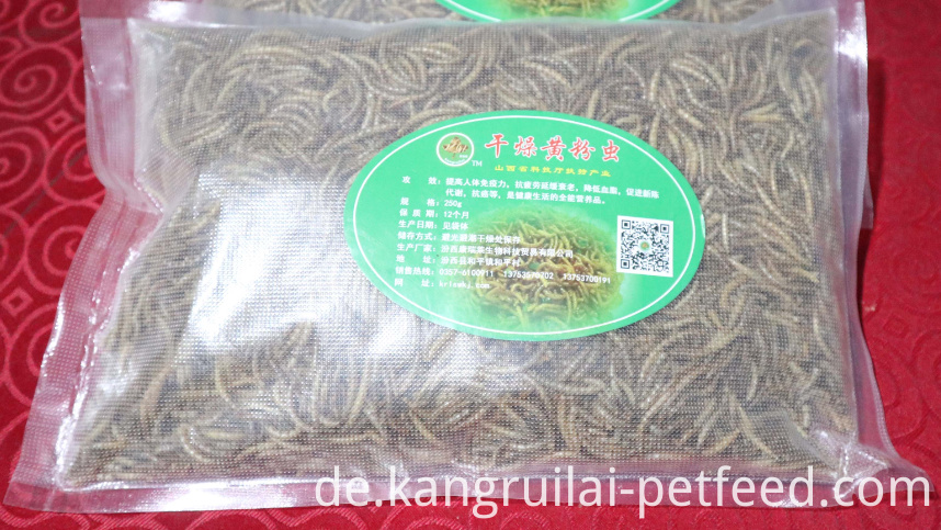 Mealworm For Chicken