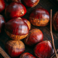 New 100% natural Chinese chestnut natural nut