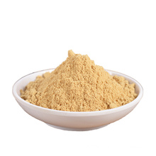 Professional Chinese Factory Hot Sale price dehydrated ginger powder