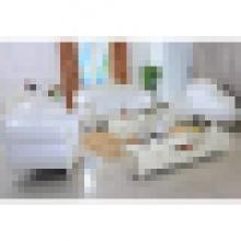 Juegos de sofá de cuero para muebles de sala de estar (929P)