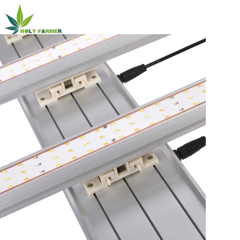 Ledgrowlight10