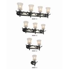 Modern Design for Home Decoration Wall Light (85601-1)