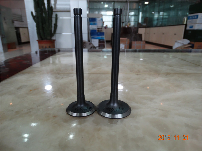 Nitriding Engine Valve