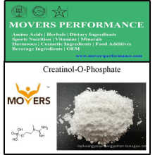 Hot Selling Nutrition Supplement Creatinol-O-Phosphate