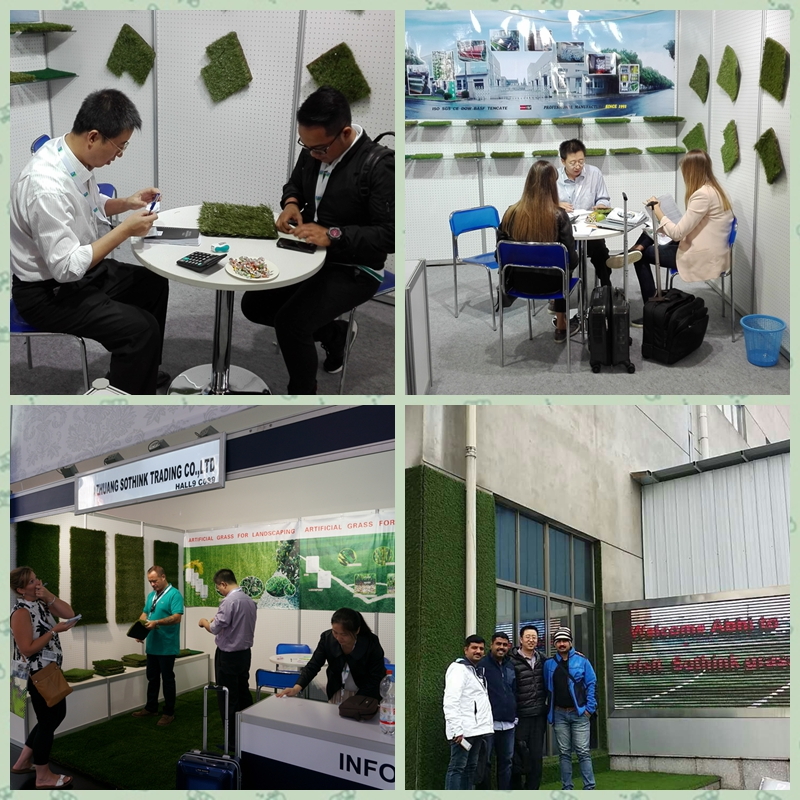 Artificial Grass Exhibition Shows