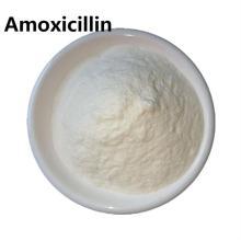 amoxicilina y clavulanato en polvo para perros