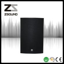 Zsound 15-Летних Собор Соник Профессиональный Динамик Звуковая Система