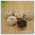 Extrait naturel d'ail noir fermenté