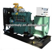 Generador de biogás chino