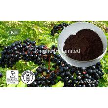 Extracto de baya de saúco Anthocyanidins 3% a 25% por UV; 4: 1; 10: 1