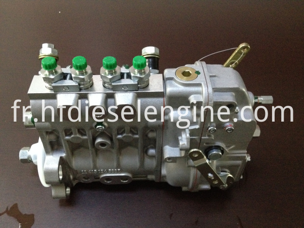 deutz fuel injection pump (5)