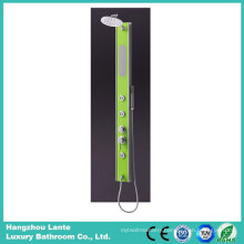 Competitive Price Bathroom Control Shower Screen (LT-H307)