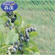 Malla anti del pájaro de la malla verde del diamante, red del pájaro del árbol frutal del HDPE