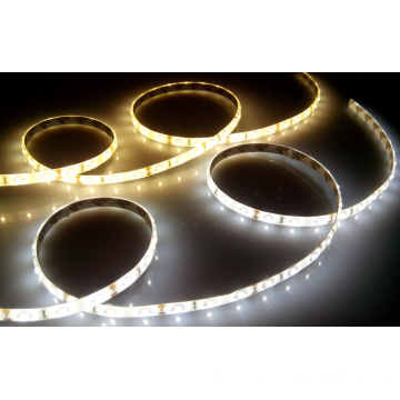 Strip Led 3528 IP20 IP65