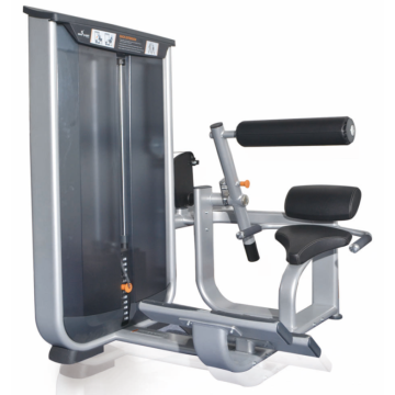 Commerciële sportschool Exercise Equipment Back Extension