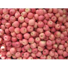 Pomme rouge de Chine