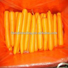 Chinesische rote Karotte