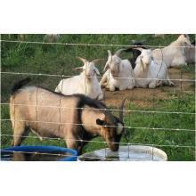 Galvanized Farm Fence/ Cattle Fence