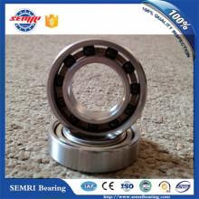 Roulement en céramique hybride de cage en nylon de Zro2 Ball (61804)