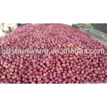 top class fresh red hua niu apple