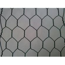 Galvanisiertes sechseckiges Drahtgeflecht / sechseckiger Maschendraht / Maschendraht-Maschendraht
