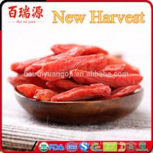 Las bayas secas de Goji importan desde china a pakistan bulk y venden wolfberry