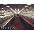 (40/2) Polyester Thread with Virgin Fiber High Tenacity
