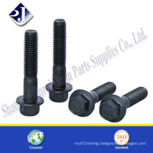 Ts16949 Certificate Product Hex Flange Bolt with Black