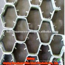Espaciamiento del agujero 2cm-6cm Acero inoxidable Tortoise Shell Mesh (Fábrica)