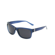 Retro Ray Band Design Mens Womens Square Frames Polarized Lens Sunglasses