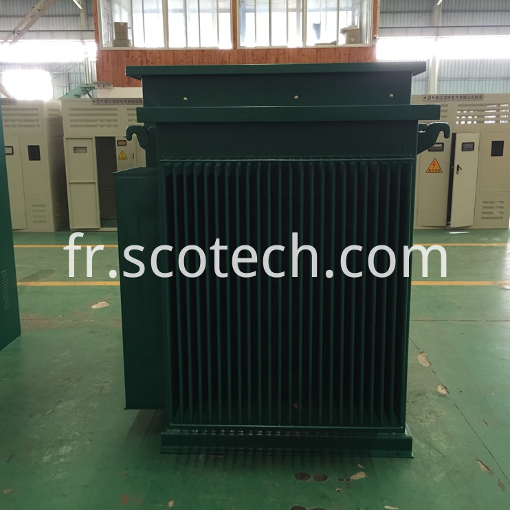 Pad Mounted Transformer 05