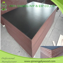 1220X2440X12-18mm Poplar Core Construction Plywood with Waterproof Glue