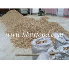Dried Shiitake Mushroom Leg From Hubei