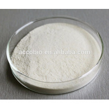 high purity good quality Immune Fuction Agents of Sodium D-pantothenate CAS 867-81-2