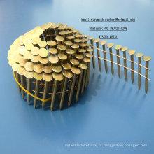 "1-1 / 4 ""X. 120 EG Bobina de Prego 7200PCS / CTN Fábrica na China"